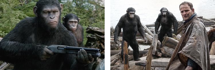 Photo la planète des singes - l'affrontement