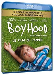 BR boyhood